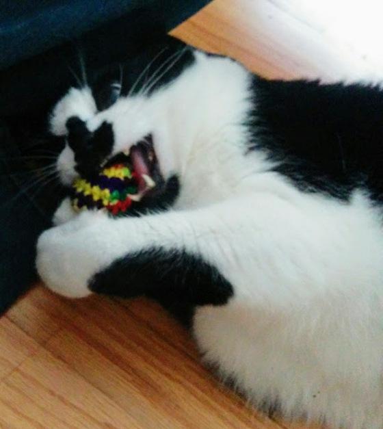 crochet-catnip-balls